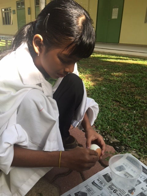 Year 6 Ms Pamela-Sc Egg Experiment - 4